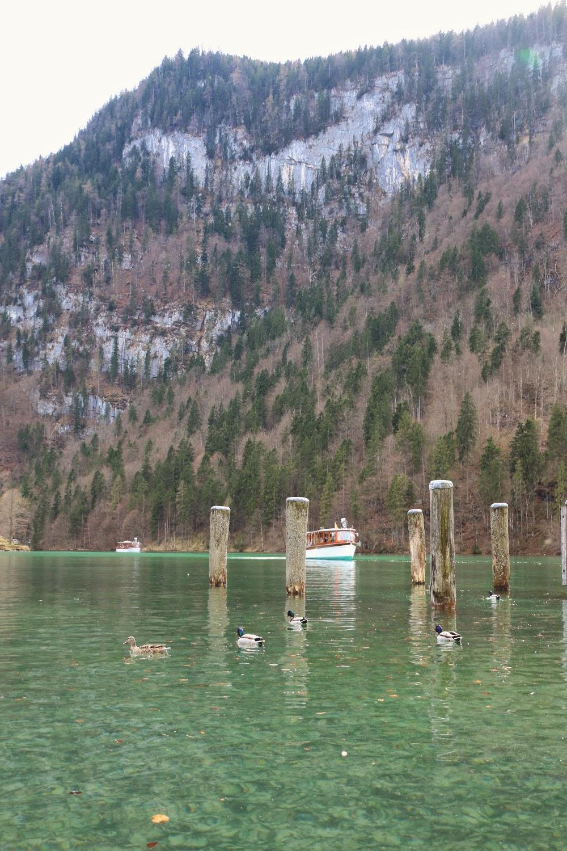 Lake Konigssee // Berchtesgaden National Park