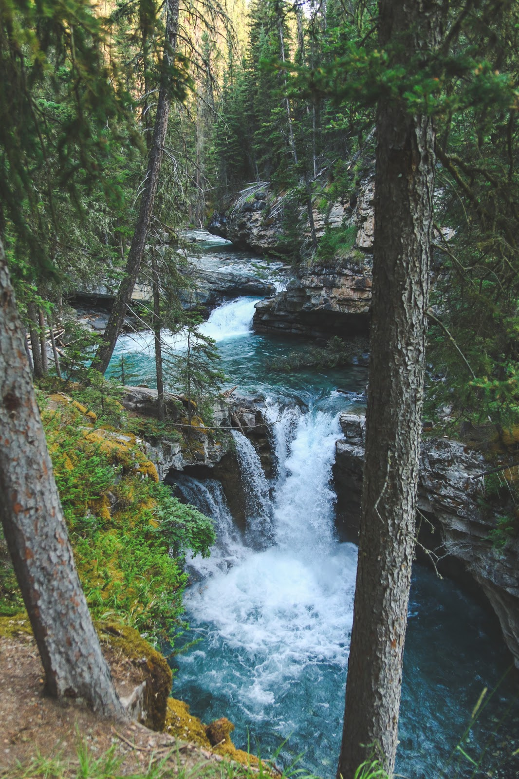 Hiking Johnston Canyon // Banff National Park